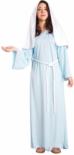 Biblical Times Lady Of Faith Mary Costume Adult