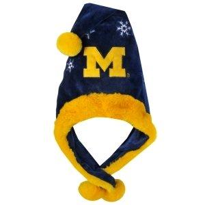 Michigan Wolverines Dangle Hat