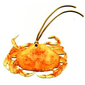 Orange Crab Gift Tags, Pack Of 10 front-741836