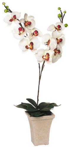 GKI Bethlehem Lighting 28-Inch White with Purple Orchid with LED Lights, Battery Operated