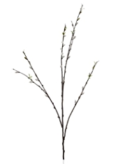 Artificial Pussy Willow