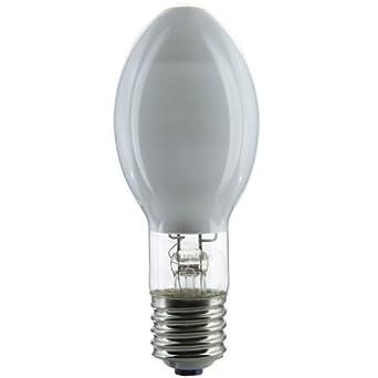 Mercury containing lightbulbs contaminate the home and the ... |Long Light Bulbs Mercury