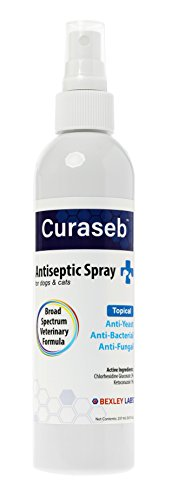 #1 Antiseptic Chlorhexidine Medicated Spray for Dogs - Anti-Yeast, Anti-Bacterial, Anti-Fungal - Effective against Pyoderma, Ringworm & Allergies - Wound Care for Dogs - 100% Satisfaction Guarantee