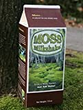 Bonsai Moss