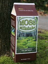 Bonsai Moss Milkshake