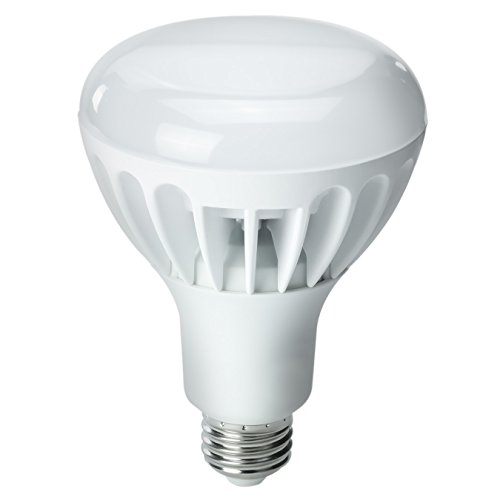 Kobi Electric K2L9 12-Watt (60-Watt) R30 Led 2700K Warm White Indoor Flood Light Bulb, Dimmable