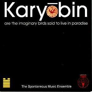 Karyobin Are the Imaginary Birds Said to Live in Paradise