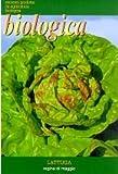 Organic Lettuce Lattuga Regina di Maggio Bio