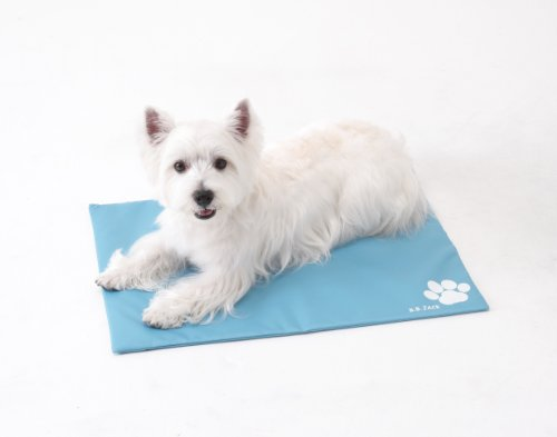 Pet Gel Cool Cushion Mat Pad Eco Friendly for Dogs & Cats with Cover, Medium EG27