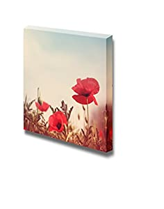 Canvas prints wall art vintage style poppy for Home decorations amazon