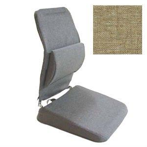 Dissertation Seat Comfort