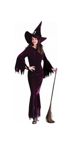Witch Elegant Plum Costume - Adult Costume