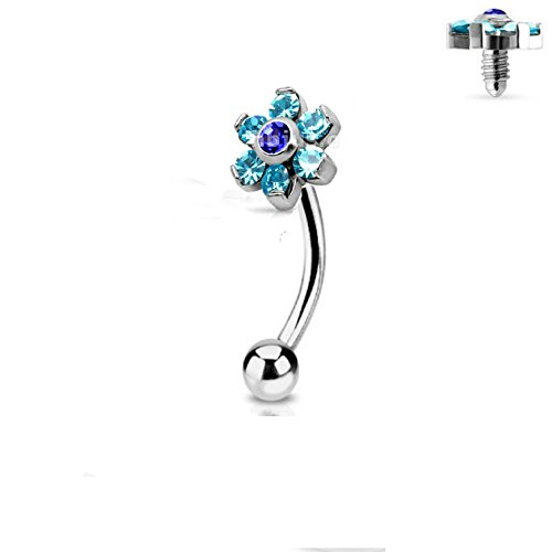 Jeweled Twin Daisy Flowers Spinal Barbell Christina Vertical Hood VCH Jewelry Genital Piercing 1/2 (AQUA) (Vertical Hood Piercing compare prices)