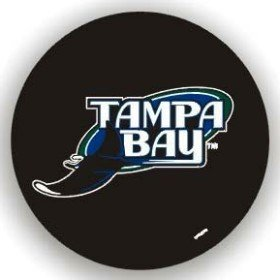 MLB Tampa Bay Rays Tire Cover