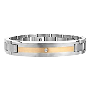 Titanium Bracelet Single Diamond Gold Plated Center Link - B007V3K19E