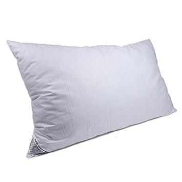 Slumberdown anti-allergie Oreillers Pack de 2 blanc