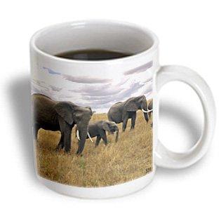 3Drose African Elephant Masai Mara National Park Kenya Africa Mug, 11-Ounce