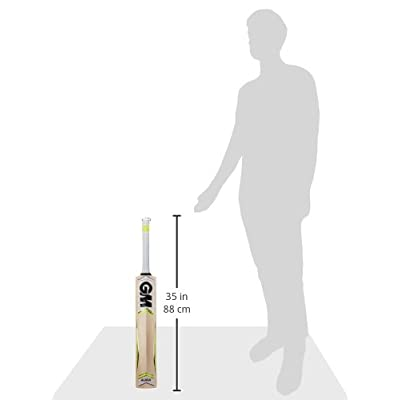 GM Dynamite English Willow Cricket Bat, Short Handle
