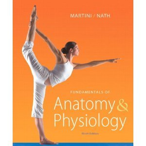 Fundamentals of Anatomy & Physiology