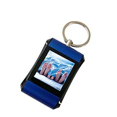 Flash-Ddl Mini 1.5 Inch Digital Photo Frame With Key Ring , Silver