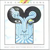 Chameleons - What Does Anything Mean? Basically