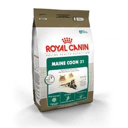 Image of Royal Canin Feline Health Nutrition Maine Coon 31 Formula Dry Cat Food