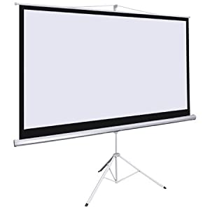 Manual Pull Down Projection Screen 100