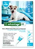 Advantage Flea Control for Dogs, 11-20 lbs Teal, 6 Month
