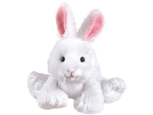 Webkinz Rabbit & Lil Kinz Rabbit Set by Ganz
