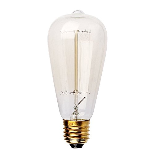 Parrot Uncle 60 Watt Filament Long Life Vintage 1910 Edison Incandescent Light Bulb E26 E27