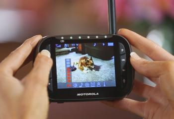 Motorola Scout 2300 Video Pet Monitor with pan, tilt, and zoom.