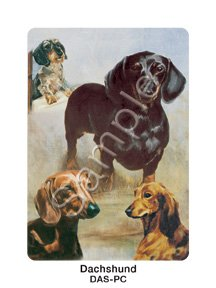 Dachshund Dog Playing Cards by Ruth Maystead