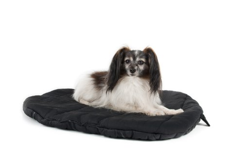 Therapeutic Dog Bed 9243 front