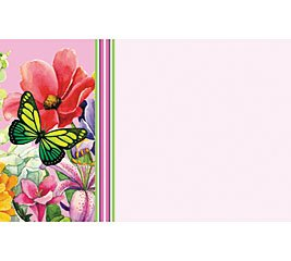Everyday Butterfly Breeze & Flowers Enclosure Cards 50 Pack- Gift Supplies