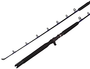 Bait Casting Rod, IM6 Hi-Modulous Graphite Blank, Silicon Carbide (SIC) Guides, EVA... by Altenkirch