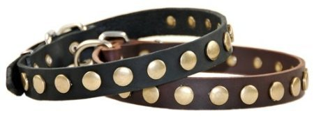"Dean And Tyler ""Dog Circle"", Leather Dog Collar With Brilliant Brass Circles - Black - Size 18-Inch By 1-Inch - Fits Neck 16-Inch To 20-Inch"
