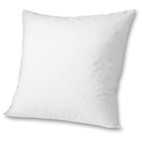 Eddie Bauer Down Pillow Insert 20x20, White ONESZE