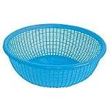 Excellanté 10-Inch Plastic Wash Basket