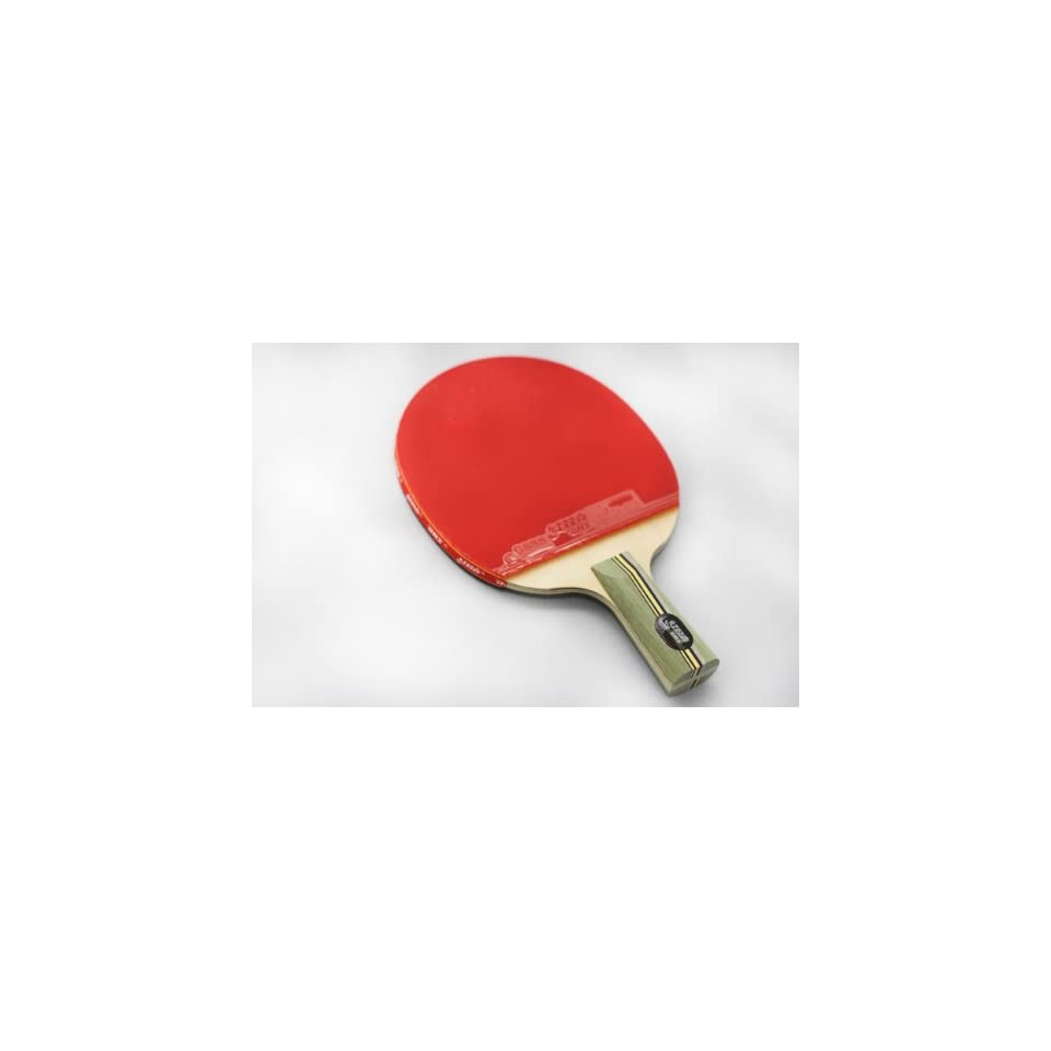 DHS Professional Quick attack 4 Star L Series/L406 Table Tennis Racket penhold