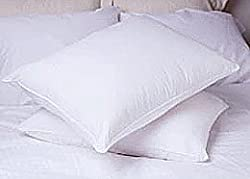 Restful Nights Trillium Polyester Standard Pillow