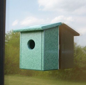 Songbird Essentials Recycled Plastic Window Nest View Bird House Nesting Box