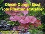 500 ml Wasserpflanzen D�nger + Wasser...