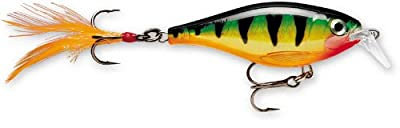 Rapala X-Rap Shallow (Perch) from South Bend