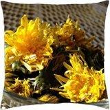 Pissenlits et séchage pour salade-Housse étui couverture Taie d'oreiller (18