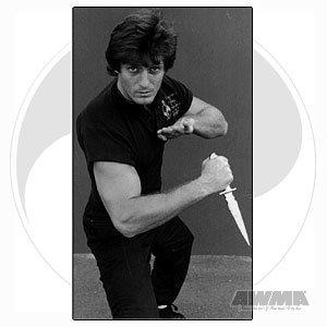 Jeet Kune Do Paul Vunak Knife Fighting Martial Arts Instructional Training [Vhs]
