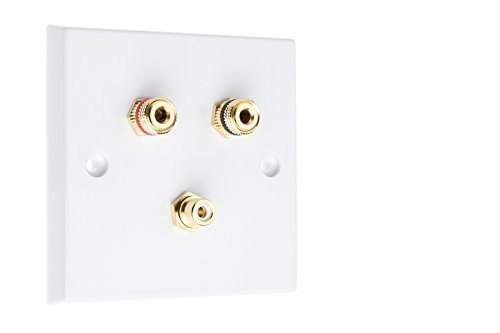 11-surround-sound-speaker-wall-plate-with-gold-binding-posts-rca-socket-no-soldering-required