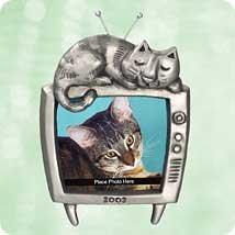 SPECIAL CAT 2003 Hallmark Ornament QXG8609