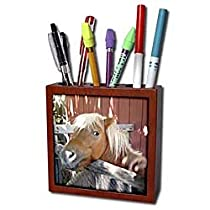 Horse - Pony - Tile Pen Holders-5 inch tile pen holder