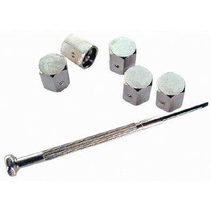 altium-707055-anti-diebstahl-ventilkappen