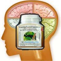 Gingko Ginseng Boost Memory Energy Supplement